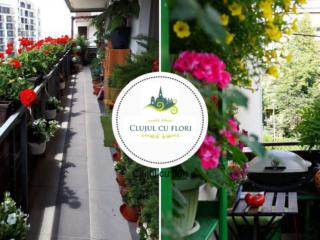 Clujul cu Flori 2019: comunitatea e invitată să-și înfrumusețeze orașul