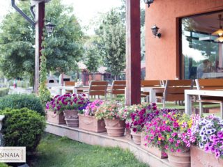 Restaurant Sinaia Cluj,