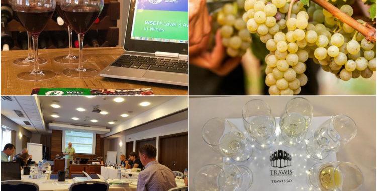 Transylvania Wine School