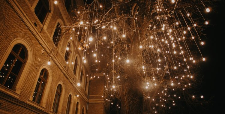 lights on editia V